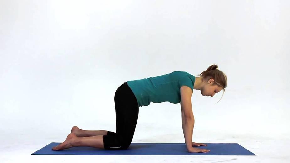 4 Point Kneeling Exercise