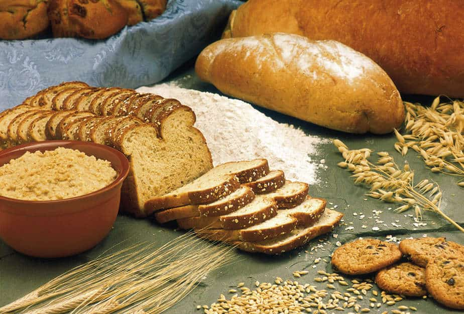 4. carbohydrate